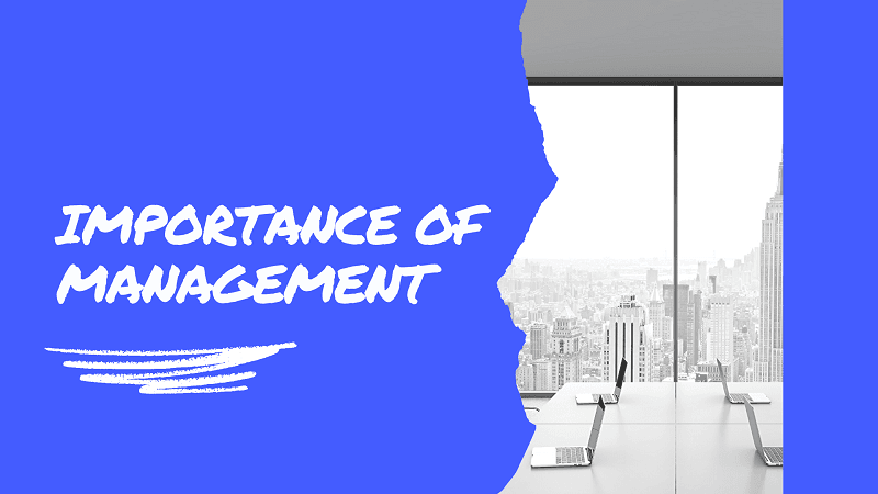 importance of management