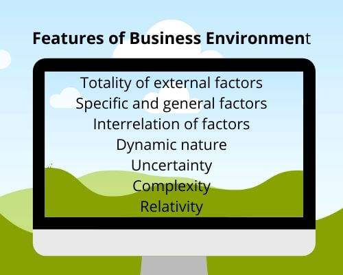7 features of business environment